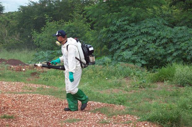 Com caso registrado, ação foi necessária na região (Foto: Assessoria de Imprensa da PMI)