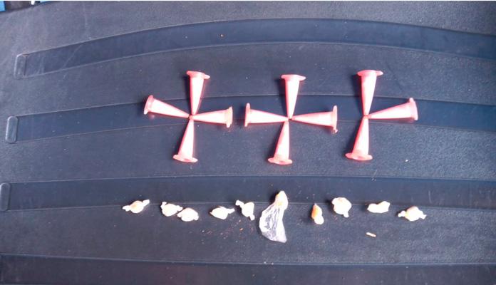 Equipe verificou substâncias parecidas com crack e cocaína (Foto: Divulgação)